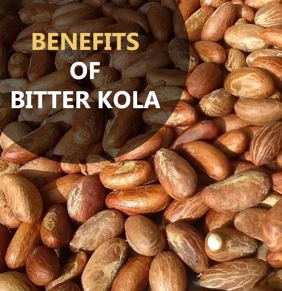 Bitter Kola: Best 4 Amazing Health Benefits & It's Side Effects